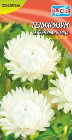 Семена Гелихризум Серебряная птица 0,1 г, ТМ Гелиос