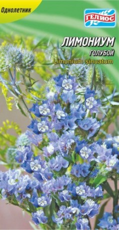 Семена Лимониум голубой, 0,05 г, ТМ Гелиос