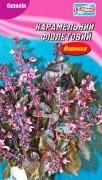 Семена Базилик Карамельный фиолетовый, 300 шт., ТМ Гелиос