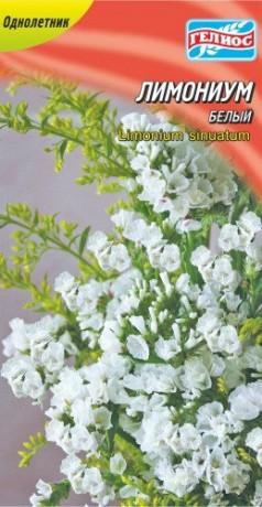 Семена Лимониум белый, 0,05 г, ТМ Гелиос