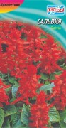 Семена Сальвия красная, 0,1 г, ТМ Гелиос