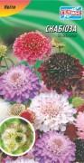 Семена Скабиоза, 0,3 г, ТМ Гелиос