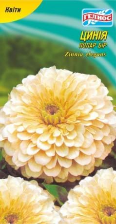 Семена Цинния Полар Бир, 30 шт., ТМ Гелиос