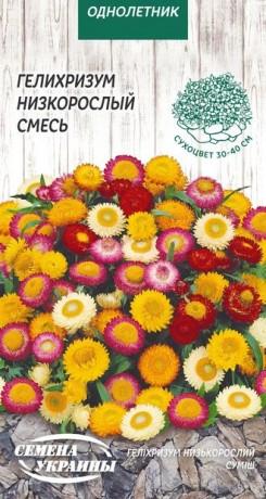 Семена Гелихризум Низкорослый смесь, 0,2 г, ТМ Семена Украины