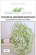 Семена Гипсофила Зимний узор, 0.1 г, Hem, Голландия, ТМ Професійне насіння
