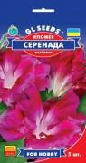 Семена Ипомея Серенада, 5 шт., ТМ GL Seeds