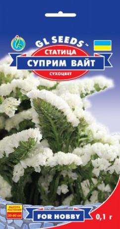 Семена Статица Суприм Вайт, 0.1 г, ТМ GL Seeds