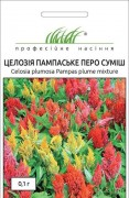 Семена Целозия Пампаское перо смесь, 0.1 г, Hem, Голландия, ТМ Професійне насіння