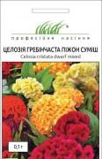 Семена Целозия гребешковая Пижон, 0.1 г, Hem, Голландия, ТМ Професійне насіння