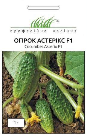 Семена Огурца Астерикс F1, 1 г, Bejo, Голландия, ТМ Професійне насіння