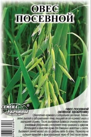 Семена Овес посевной, 1 кг