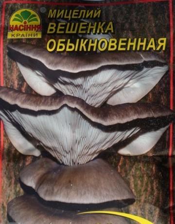 Мицелий Вешенка обыкновенная, 10 г