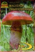 Мицелий Масленок обыкновенный, 10 г