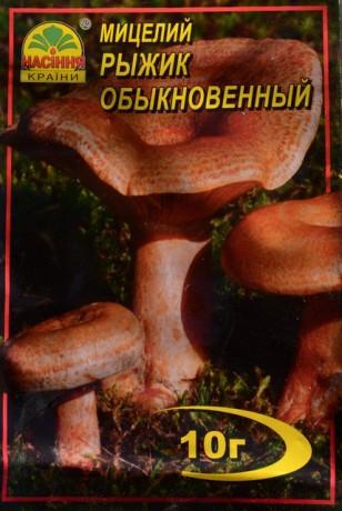 Мицелий Рыжик обыкновенный, 10 г
