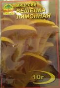 Мицелий Вешенка лимонная, 10 г