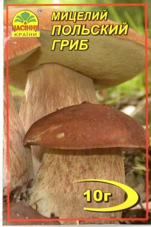 Мицелий Польский гриб, 10 г