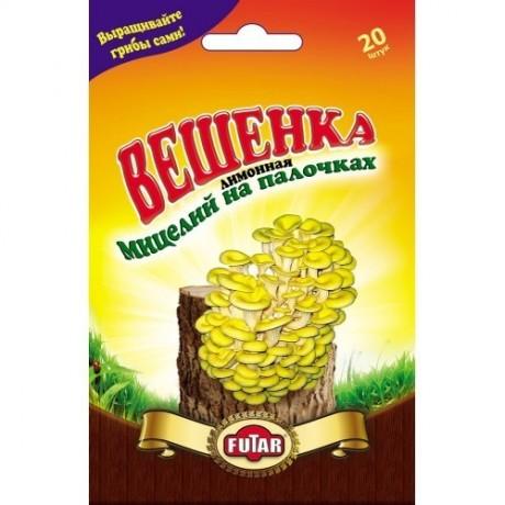Мицелий Вешенка лимонная (грибные палочки), 20 шт