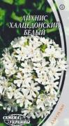 Семена Лихнис халцедонский белый, 0,3 г, ТМ Семена Украины