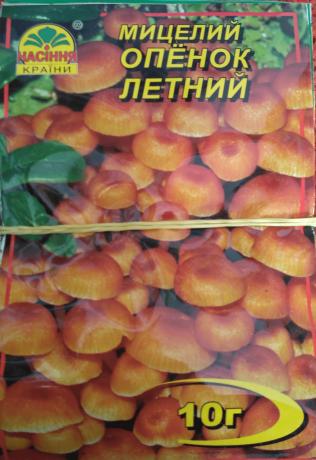 Мицелий Опенок Летний, 10 г