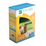 "Семена Травы газонной ""Засухоустойчивая"" Camel, 1кг, GlobalGrass"