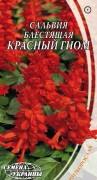 Семена Сальвия блестящая Красный гном, 0,2 г, ТМ Семена Украины