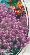 Семена Алиссум Виолет Квин, 0,1 г, ТМ Семена Украины