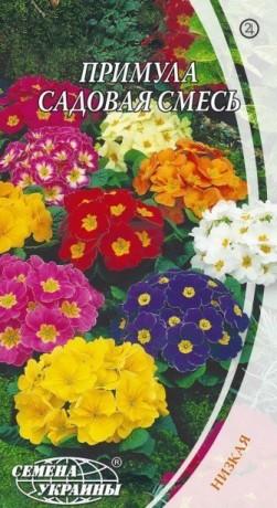 Семена Примула садовая смесь, 0,1 г, ТМ Семена Украины