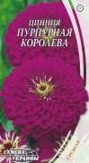Семена Цинния Пурпурная королева, 0,5 г, ТМ Семена Украины