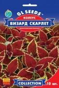 Семена Колеус Визард Скарлетт, 10 шт, TM GL Seeds