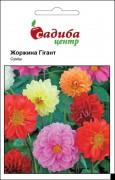 Семена Георгина Гигант смесь, 0,1 г, Hem Zaden, Голландия, ТМ Садиба Центр