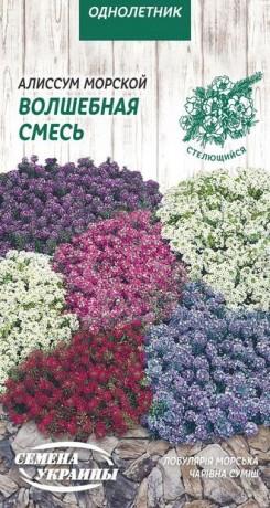 Семена Алиссум Волшебная смесь, 0,1 г, ТМ Семена Украины