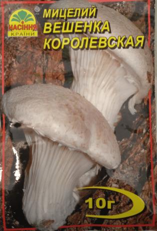 Мицелий Вешенка королевская, 10 г