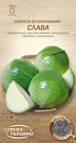 Семена Капусты Слава, 1 г, ТМ Семена Украины