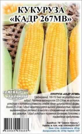 Семена Кукурузы корм. Кадр 267МВ, 1 кг, ТМ Семена Украины