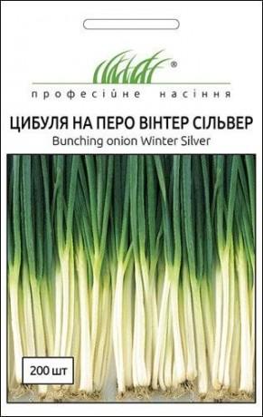 Семена Лука на перо Винтер Сильвер, 200шт, Nong Woo Bio, Южная Корея, ТМ Професійне насіння