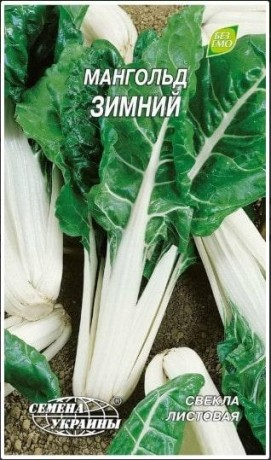 Семена Мангольда Зимний, 2 г, ТМ Семена Украины