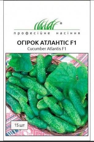 Семена Огурца Атлантис F1, 15 шт, Bejo, Голландия, ТМ Професійне насіння