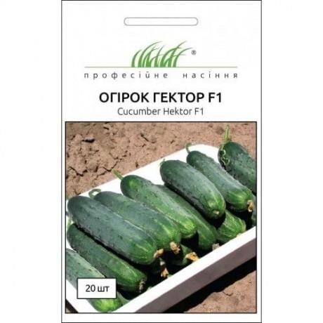 Семена Огурца Гектор F1, 20 шт, Nunhems, Голландия, ТМ Професійне насіння