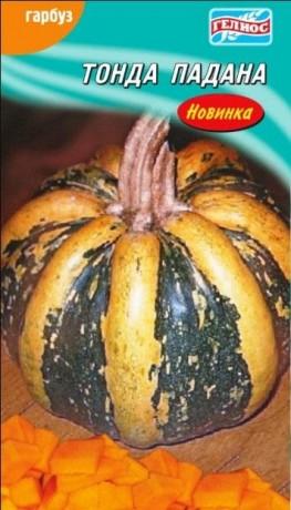 Семена Тыквы Тонда Падана, 10 шт., ТМ Гелиос