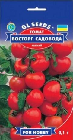 Семена Томата Восторг Садовода, 0.1 г, ТМ GL Seeds
