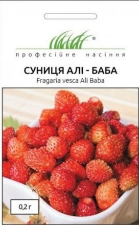 Семена Земляники Али-Баба, 0.2 г, Hem, Голландия, ТМ Професійне насіння