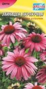Семена Эхинацея пурпурная, 30 шт., ТМ Гелиос