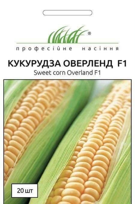 Семена Кукурузы Оверленд F1, 20 шт, Syngenta, Голландия, ТМ Професійне насіння