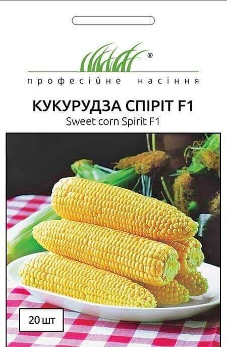 Семена Кукурузы Спирит F1, 20 шт, Syngenta, Голландия, ТМ Професійне насіння