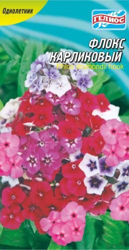 Семена Флокс карликовый смесь, 0,2 г