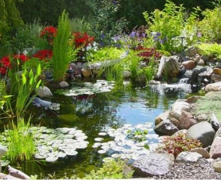 Семена цветов для райского сада